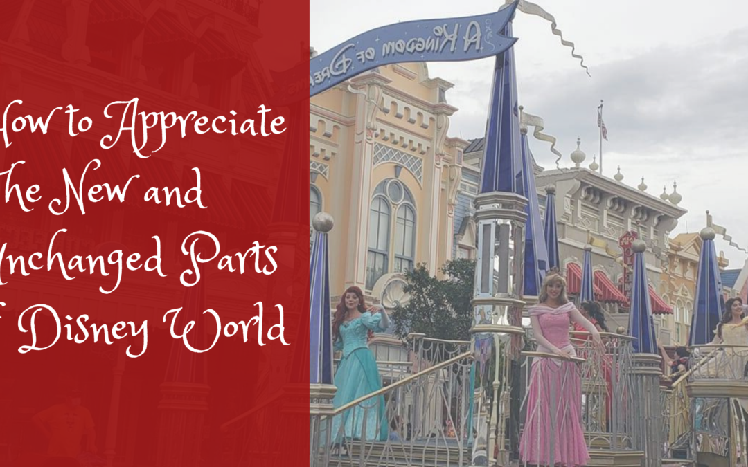 How to Appreciate The New and Unchanged Parts of Disney World