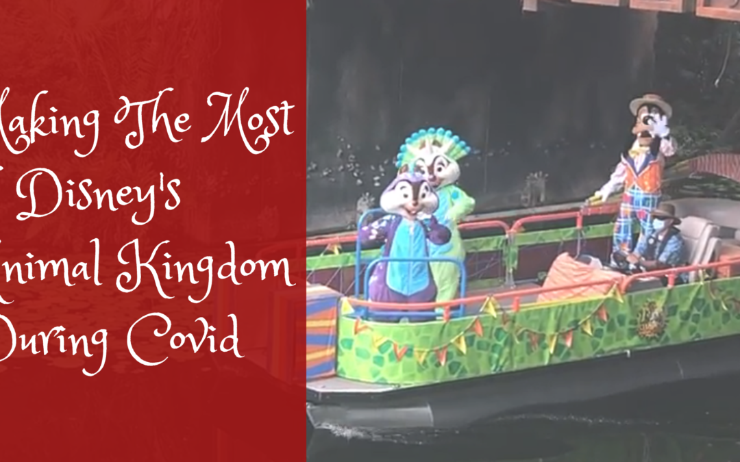 Making The Most of Disney's Animal Kingdom During Covid